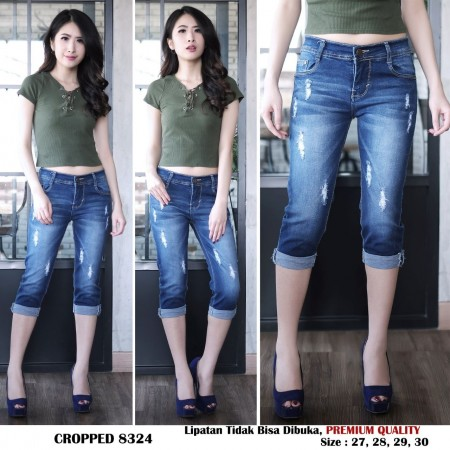 BS CROPPED 8324